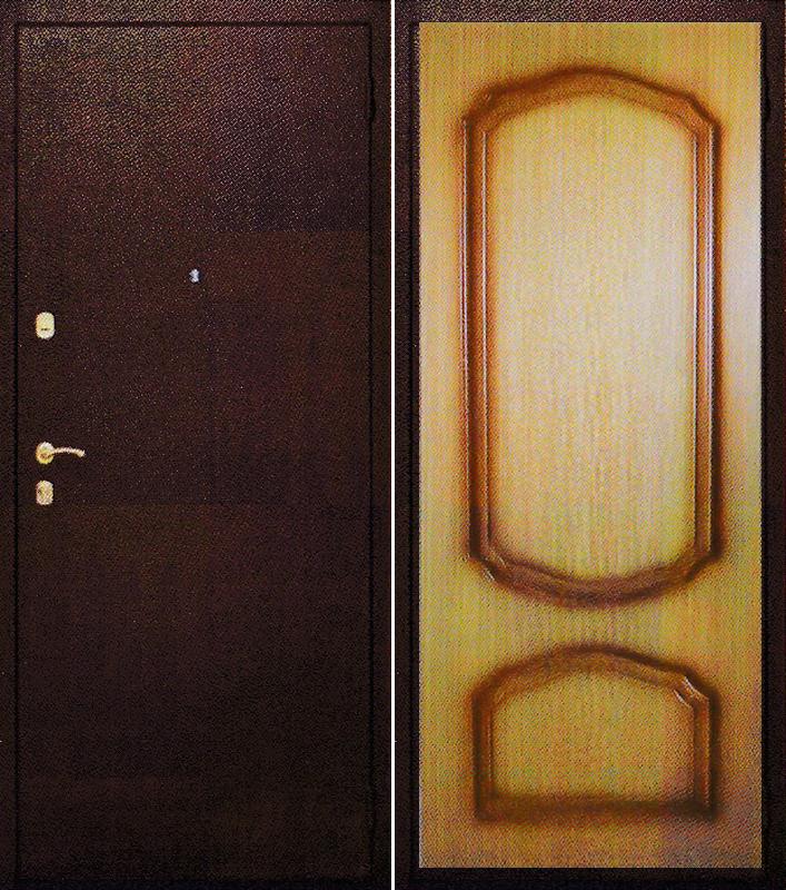 купить и поставить дверь входную железную в шатурском