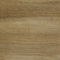 IVC Moduleo Transform Wood Baltic Maple